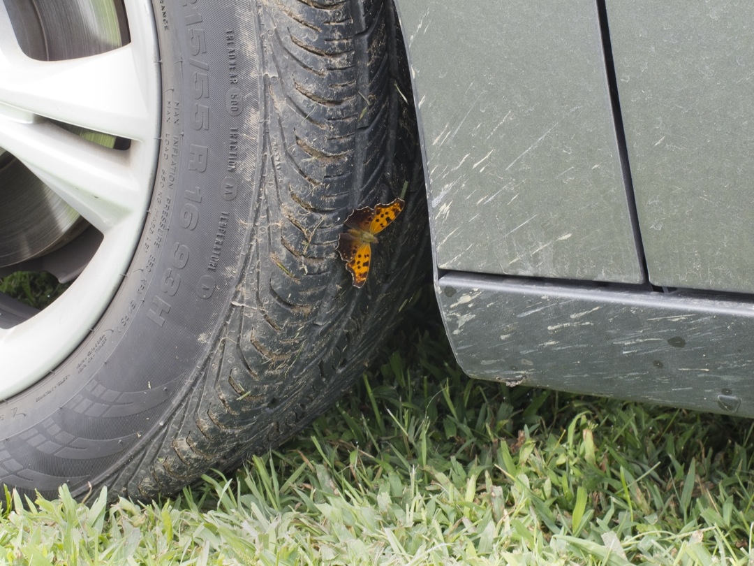 On a Tire